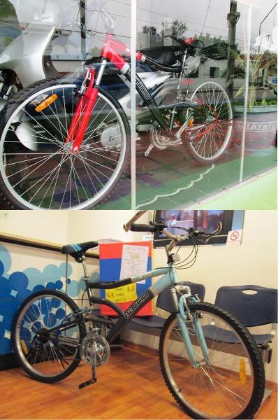 20130720043916-2-bicis-2.jpg